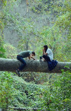 Ein Liebesbeweis in einen Baum schnitzen