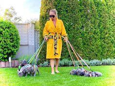 • I Cuccioli più prestigiosi,ambiti e ricercati in Europa 🇪🇺e Stati Uniti 🇺🇸❗️ Ringraziamo tutte le persone che ci scelgono per avere un cucciolo esclusivo e selezionato in termini di bellezza,salute e carattere ,il massimo che possiamo offrire,frutto della nostra passione,del nostro impegno e del nostro amore 💕❣️ Kiss My Face, Dogs Trust, Ugly Faces, Aggressive Dog, Dog Eyes, French Bulldog Puppies, Dog Owners, Your Dog, Foundation