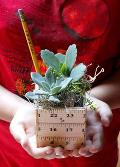 Learn how to make a sweet back to school teacher gift planter made with rulers and filled with succulents. Learn how to make a sweet back to school teacher gift planter made with rulers and filled with succulents. Back To School Crafts, Back To School Teacher, School Staff, Sunday School, Back To School Gifts For Kids, Art School, Middle School, School Ideas, High School