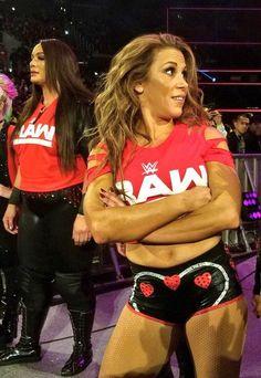 Wrestling Divas, Women's Wrestling, Wrestlemania 29, Wwe Total Divas, Nikki And Brie Bella, Mickie James, Wwe Female Wrestlers, Wwe Girls, Shawn Michaels