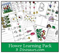 Free printable Flower Learning Pack - Money Saving Mom