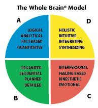 Herrmann International | Whole Brain® Products And Services | Overview of the HBDI®