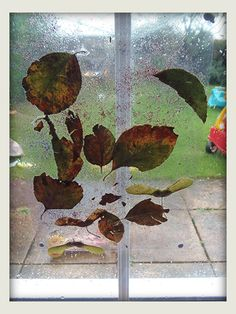 Fall window art with contact paper and nature