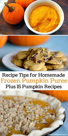 A few tips for cooking with pumpkin puree that has been frozen. Plus 15 recipes that you can use your own homemade pureed pumpkin in. Recipe Using Pumpkin, Pumpkin Puree Recipes, Homemade Pumpkin Puree, Pumpkin Spice, Thanksgiving Recipes, Fall Recipes, Great Recipes, Frugal Recipes, Pie Recipes