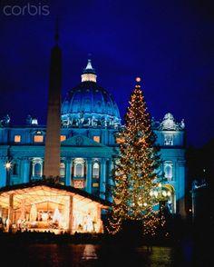 Christmas Tree And St Peter's Basilica