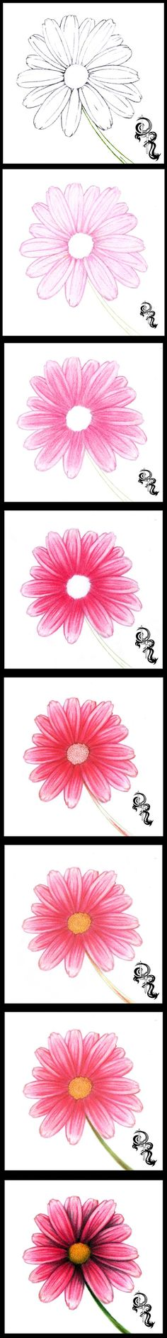 How to Draw a Daisy with Colored Pencils A step-by-step image of a colored pencil #artlesson by Derrick Rathgeber. Click the image for full details instructions on my blog page. http://derricktheartist.blogspot.com/2013/07/how-to-color-daisy-with-colored-pencils.html