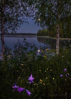 A . Kuittinen . Suomalainen maisema
