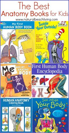 The Best Anatomy books and learning aids for kids, hands on learning, All About Me theme, Anatomy for Kids, Great Science and Health Education Books & Tools