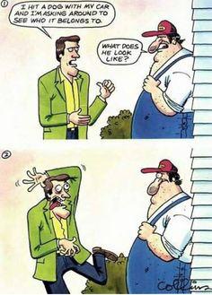 Funny cartoon - I hit a dog
