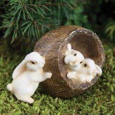 Fairy Garden Miniature Bunnies in Walnut-Fairy Garden Miniature Bunnies in Walnut. $5.99 Click here to purchase --> http://www.bakersvillagegardencenter.com/item_641/Fairy-Garden-Miniature-Bunnies-in-Walnut.htm