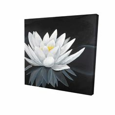 lotus flower Bloomsbury Market This canvas is basically a hand-painted painting made by one of this manufacturer's skilled artists using the highest quality oil paint and canvas. This pai Black Canvas Art, Black Canvas Paintings, Lotus Painting, Acrylic Painting Flowers, Flower Canvas, Flower Art, Lotus Flower, Painting Prints, Canvas Prints