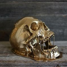 Skull dipped in gold