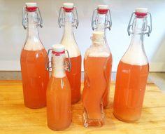 Rharbarber-Ingwer-Sirup selbstgemacht: Köstlich mit Sekt oder auch einfach zusammen mit Mineralwasser und Limettensaft. Hier das Rezept.
