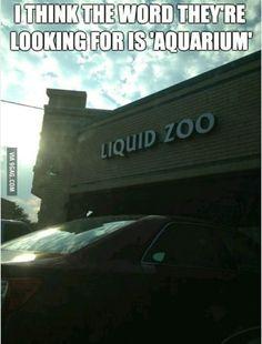 Liquid Zoo...