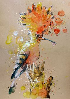 Hoopoe painting by Tilen Ti watercolor with pencil 10March2015
