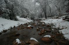 Payson, AZ : East Verde River in Winter. My home.  Love is Ageless http://www.susanhaught.com
