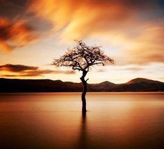 Beautiful Landscapes by Stewart Hardy