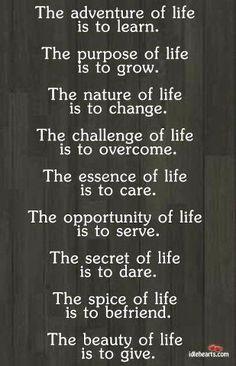 Life, an adventure, experience, too short, enjoy, ♥