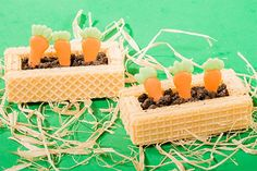 Carrot patch made of chocolate and cookies