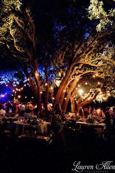 Outdoor Wedding Reception  #lights #beautiful #evening #wedding  www.sugarfishproductions.com