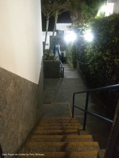 Sesc Poços de Caldas Archives - Paty ShibuyaPaty Shibuya
