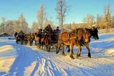 Take a horse drawn sleigh ride Holidays In Norway, Winter Holidays, Jotunheimen National Park, Mountain Village, Horse Drawn, Winter Snow, Cross Country, Finland, Denmark