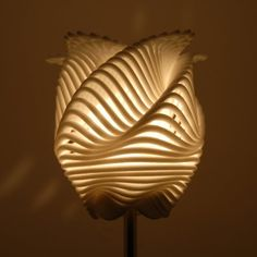 flower lamp made of parametric equations