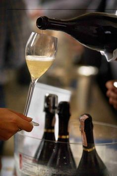 Image detail for -Wine of Lombardia: Franciacorta - Northern Italy Wine & Culinary ...