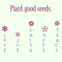 plant seeds of love and good things Latest Gadgets, Planting Seeds, News Blog, New Technology, Me Quotes, Women's Ministry, Joy, Writing, My Love