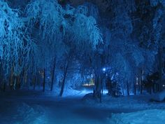 Snow, Covered - Free Images on Pixabay