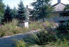 Roy Residence - Savanna Designs