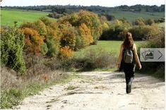 Hvordan man kan tabe sig ved at gå — Bedre Livsstil Country Roads, Health, Quelque Chose, Psychology, Nutrition, Yoga, Benefits Of Walking, Environment, Ideas