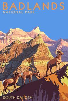 Badlands National Park, South Dakota - Bighorn Sheep - Lantern Press Poster