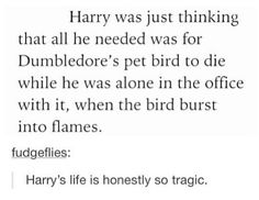 Harry's life is honestly so tragic. Harry Potter Books, Harry Potter Fan Art, Harry Potter World, Harry Potter Memes, Ministry Of Magic, Yer A Wizard Harry, Mischief Managed, Hogwarts, Fandoms