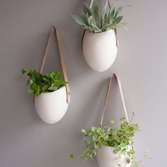 Planter Leather Set Of 3, £100, now featured on Fab.