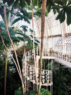Kew Gardens in London. Botanical Gardens Wedding, Garden Wedding, Kew Gardens London, Versailles Garden, British Garden, Paradise On Earth, Europe, Garden Styles, Gardening