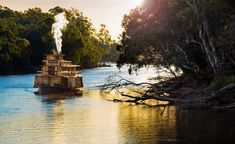 In the twin river towns of Echuca and Moama in The Murray region of NSW. Enjoy a paddle-steamer cruise, waterside wineries and rich riverboat heritage. Twin River, Murray River, Spring Nature, Australia Travel, Nature Photos, Coastal, Road Trip, Ocean, Explore
