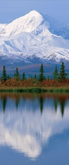 Mt McKinley is the highest mountain peak in North America, with an elevation of 20,237 feet. #alaska