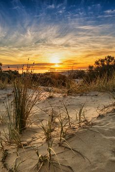 Golden sunset at Adelaide, South Australia, with the Grange jetty in the distance (by Bipphy Kath on 500px)