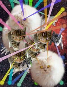 lasers and cats  VOY A TI EN SILENCIO,COMO UN RAYO DE LUZ