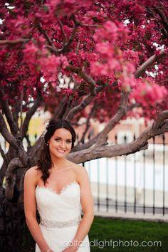 Jessica's Bridal Session | Salt & Light Photography #bride #bridal #wedding #dress #hair #makeup #flowers #blooming #tree #pink #spring