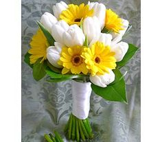 WED-048a  This hand-tied Bridal bouquet showcases a clean, crisp Spring look.    Flowers shown include 15 white Dutch Tulips and 7 yellow Germini Daisies with Bear Grass and Salal Tips. Stems are banded with white satin ribbon.