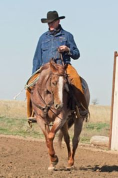 Photo by Tonya Ratliff Garrison Ranch Riding, Reining Horses, Horse Training Tips, Horse Ranch, Cowboys, Equestrian, Riding Helmets, Cowboy Hats, Westerns