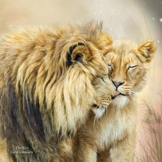 Lion Poster featuring the mixed media The Kiss by Carol Cavalaris Couple Lion, Beautiful Cats, Animals Beautiful, Lion Tigre, Animals And Pets, Cute Animals, Lion And Lioness, Lion Love, Kiss Art