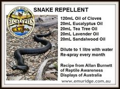 snake repellent - I'll try anything!