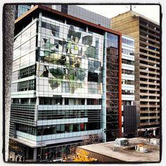 #instagram @carlos_esmeral #downtown #montreal #concordia