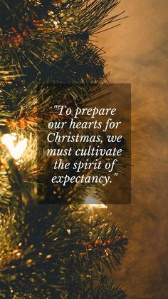Merry Christmas eve quotes for family and friends: To prepare our hearts for Christmas, we must cultivate the spirit of expectancy. #MerryChristmasEveQuotes #MerryChristmasEveMessages Short Christmas Wishes, Merry Christmas Wishes Text, Christmas Wishes Quotes, Merry Christmas Eve, Christmas Messages, Christmas Greetings, Christmas Humor, Inspirational Christmas Message, Jesus Quotes