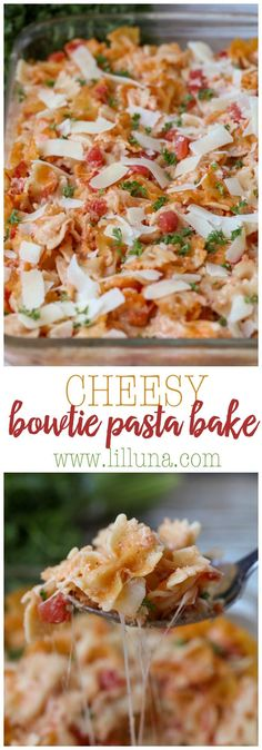 Cheesy Bowtie Pasta Bake - a favorite dinner recipe! The whole family loves this cheesy dish. A hearty dish full of bow tie pasta, parsley, tomatoes, and lots of cheese! Easy Pasta Recipes, Dinner Recipes, Easy Meals, Cooking Recipes, Healthy Recipes, Healthy Meals, Dinner Ideas, Healthy Food, Pasta Bake