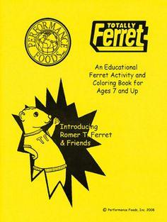 ferret activity coloring book