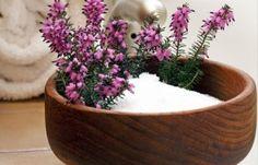 Sales de magnesio para el baño (Sales Epson)